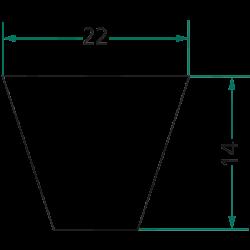 COURROIE TRAPÉZOÏDALE 22 X 14 MM LG 1650 MM C62 1/2