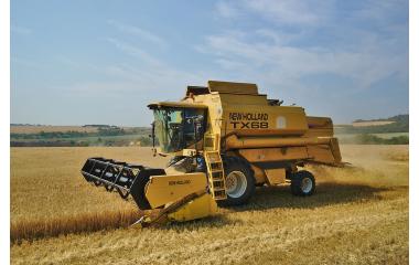 Rendements en blé tendre : une légère baisse par rapport à 2017